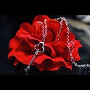 Silver 925 key necklace
